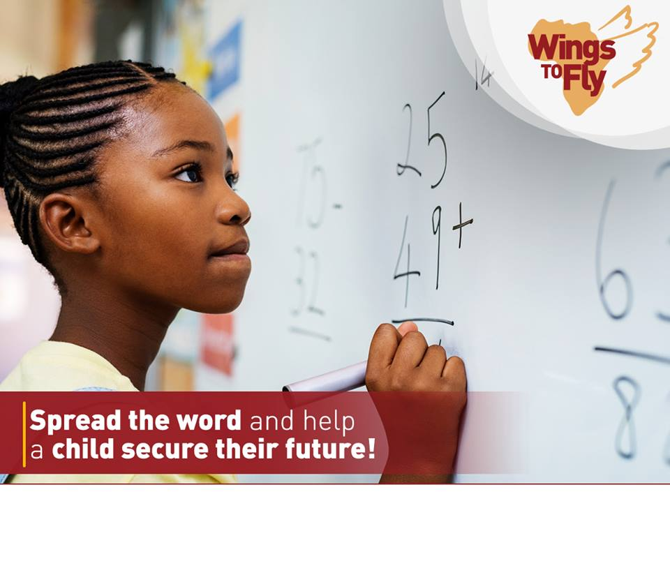 equity wings to fly scholarship