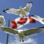 Immigration to Canada from Kenya